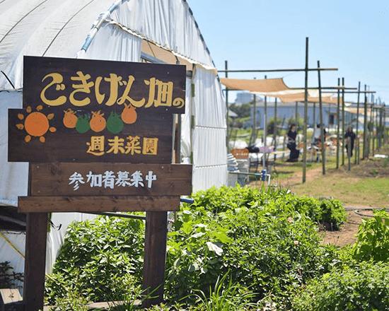 ごきげん畑の週末菜園イメージ